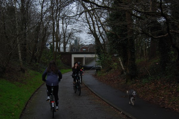 Where possible, Bracknell's bike lanes are sunk lower than the roads.