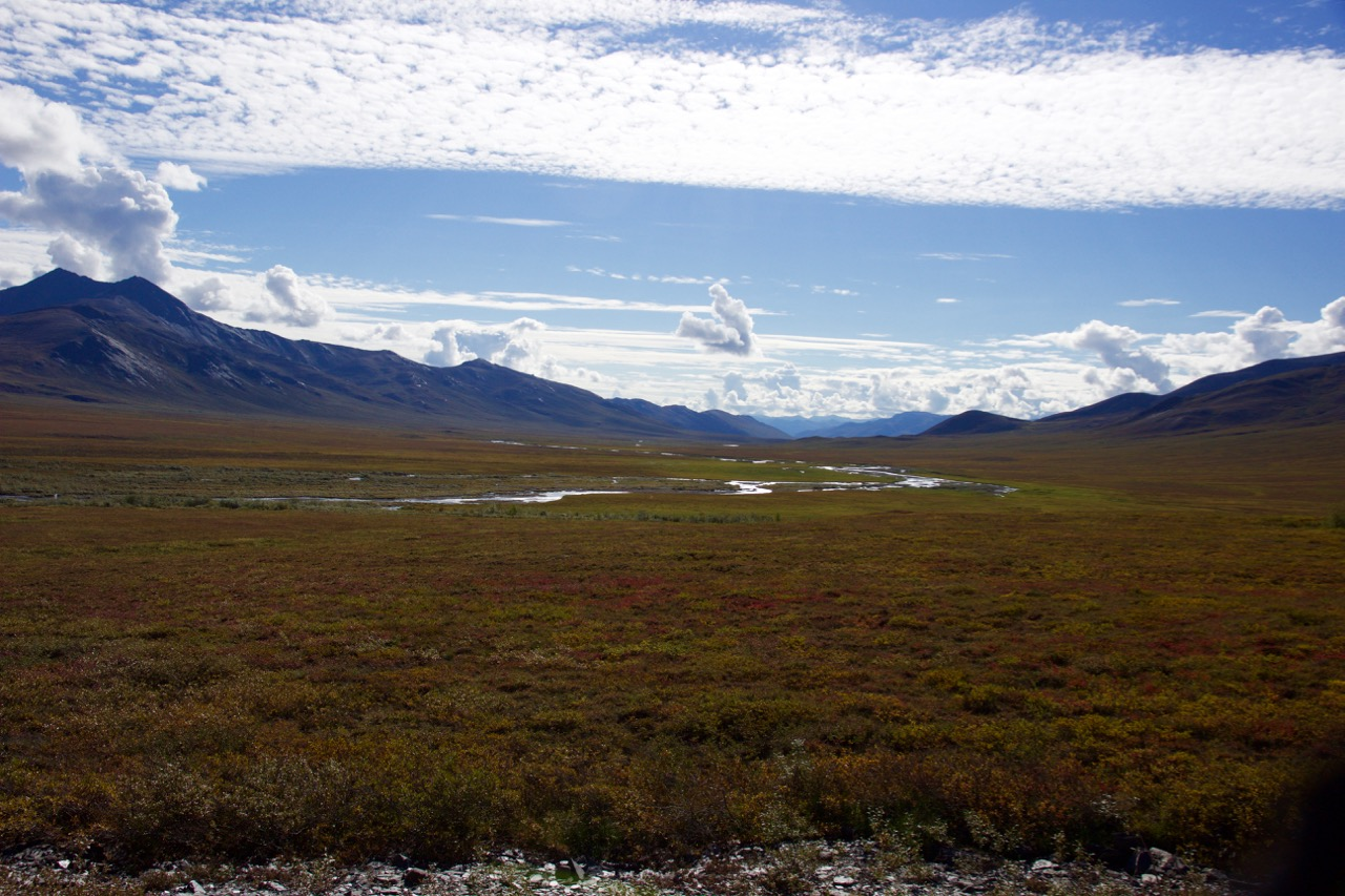 Beautiful autumn colors in the tundra beyond Antigun pass *