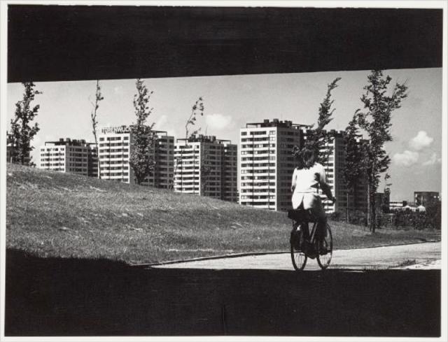 amsterdam-cycling-18