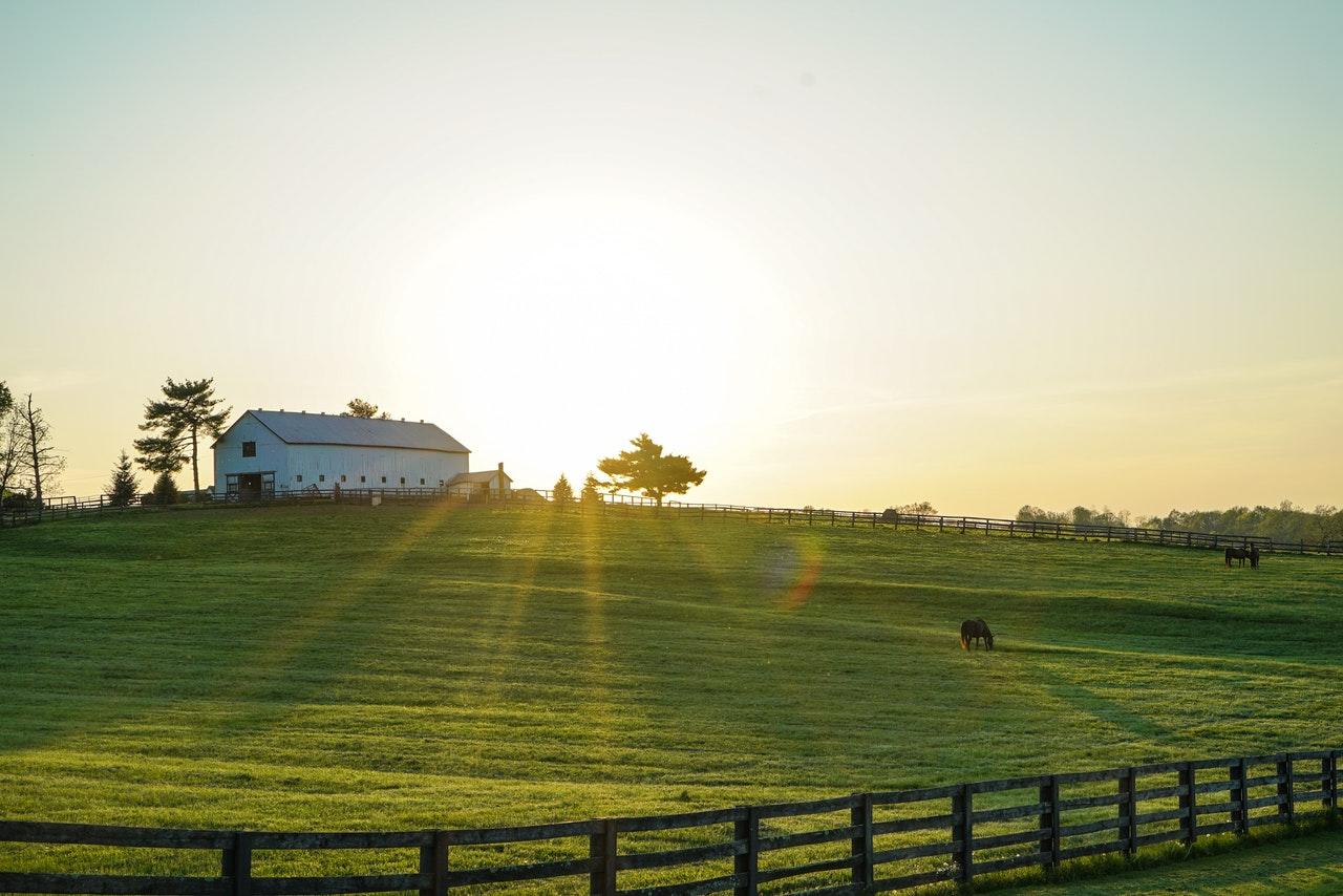Farma w Kentucky